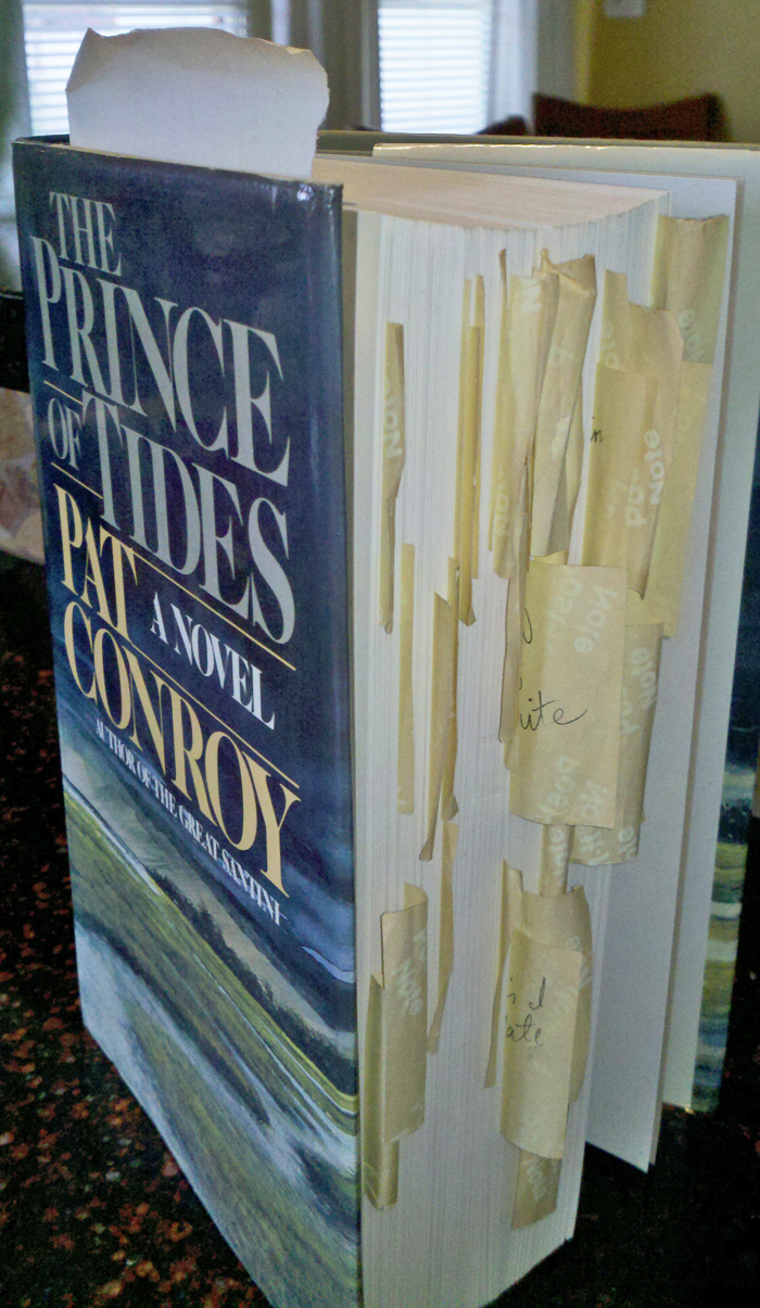 The prince of tides book essay